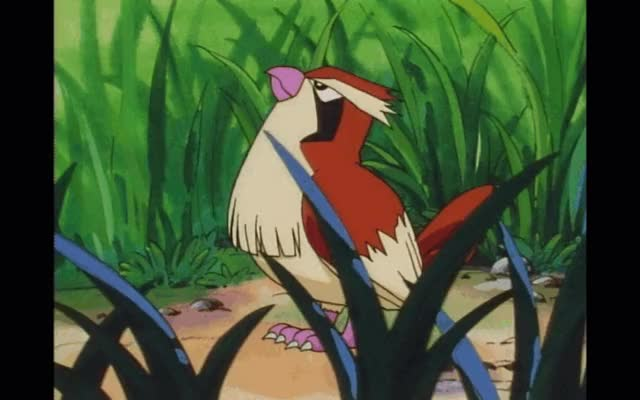 Best Dark Pokemon GIFs | Find the top GIF on Gfycat