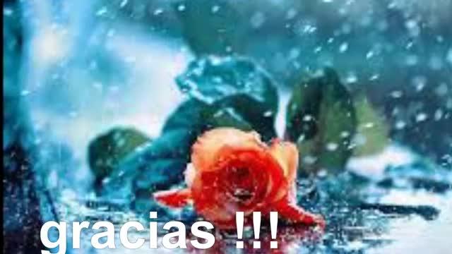Watch Como la lluvia Sergio vega GIF by @loveon on Gfycat. Discover more Gramy Ramirez, People & Blogs GIFs on Gfycat