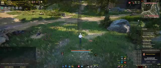 Watch and share Bdo GIFs by koviko on Gfycat