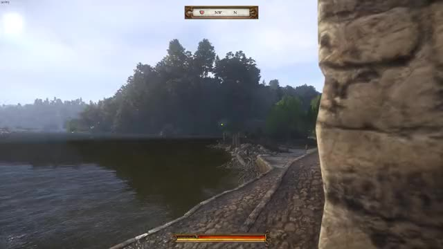 Watch This demon follows you in Kingdom Come: Deliverance GIF on Gfycat. Discover more related GIFs on Gfycat