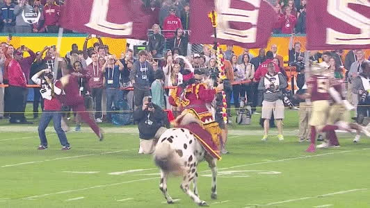 cfb, SB Nation GIF - Horse ain't havin' it tonight GIFs