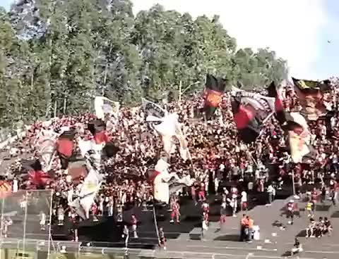Watch and share Torcida GIFs on Gfycat
