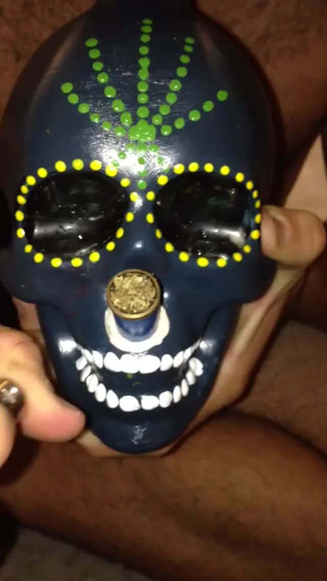 Watch Happy 420 from Australia GIF on Gfycat. Discover more trees GIFs on Gfycat
