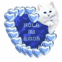 Watch and share Spanish, Espanol Comentarios, Hola Mi Amor GIFs on Gfycat