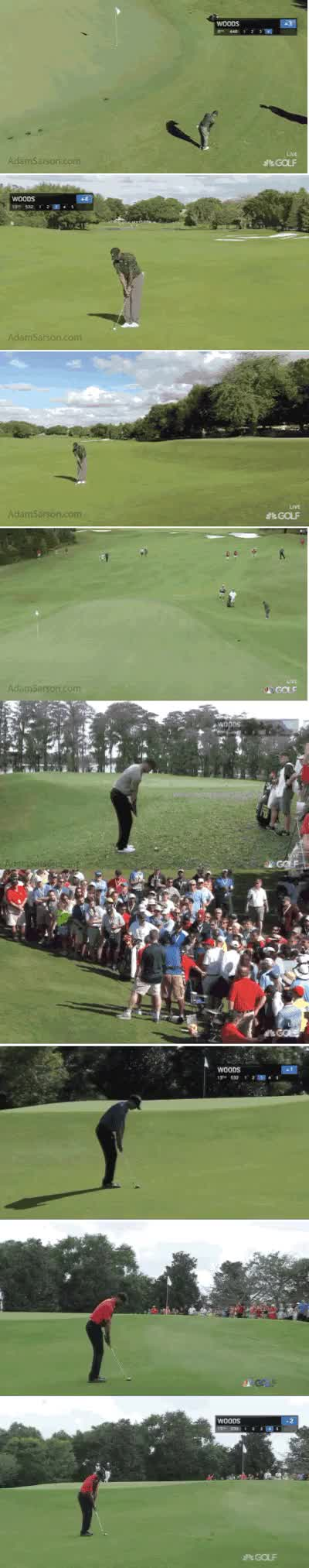 Watch and share Tiger Chunk GIFs on Gfycat