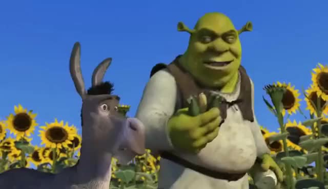 Watch and share Ogres Are Like Onions GIFs on Gfycat