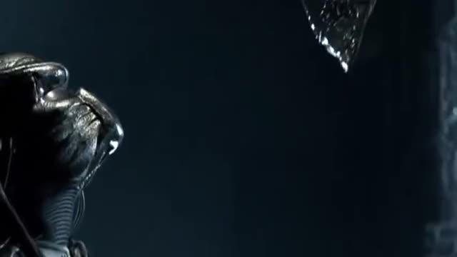 Watch and share Alien Vs Predator GIFs on Gfycat