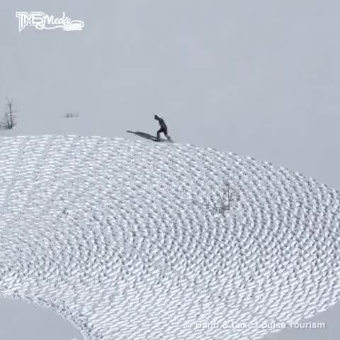 Watch and share Snow Art GIFs by hjalmar111 on Gfycat