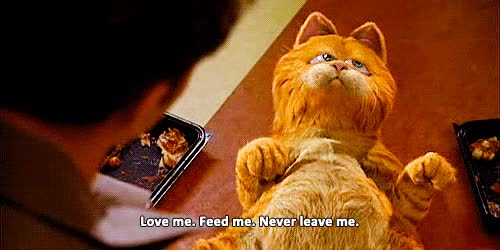 Watch and share Garfield GIFs on Gfycat