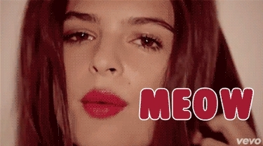 cat, cats, emily ratajkowski, kitten, kitty, meow, Meow GIFs