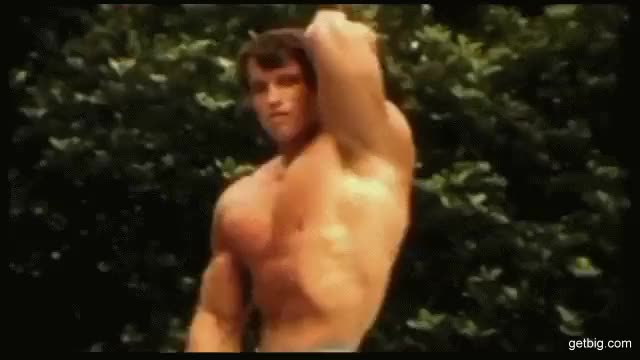 Watch and share ARNOLD SCHWARZENEGGER GIFs by bubbascarecrow on Gfycat