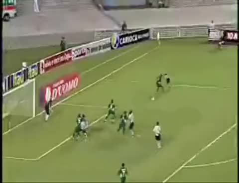 Watch and share Dodô Botafogo GIFs on Gfycat