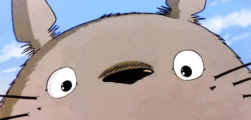 Watch and share Totoro Gif GIFs on Gfycat