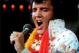 Watch Simply Elvis GIF on Gfycat. Discover more 1970s, 1973, aloha from hawaii, american trilogy, elvis, elvis presley, gif, presleyedit, the great performances, the man and the music GIFs on Gfycat