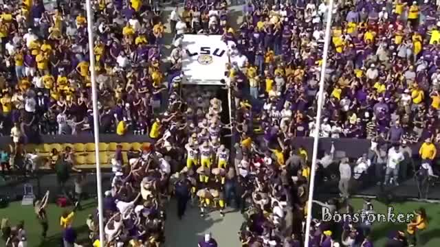Watch and share LSU - Protectors Of The SEC GIFs on Gfycat
