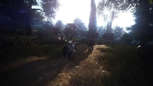 Watch BDO Reshade GIF on Gfycat. Discover more related GIFs on Gfycat