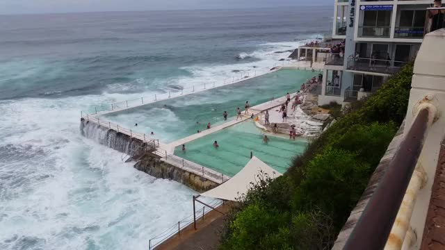 Watch and share Bondi Beach Icebergs Swimming Pool GIFs by solateor on Gfycat