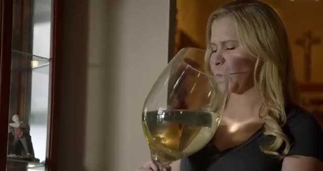 Watch this trending GIF by GIF Queen (@ioanna) on Gfycat. Discover more amy, awkward, drink, drunk, epic, funny, hilarious, party, schumer, wine GIFs on Gfycat