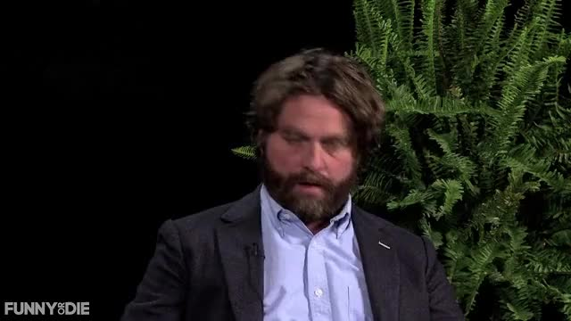 Watch this between two ferns GIF by Funny Or Die (@funnyordie) on Gfycat. Discover more Between Two Ferns with Zach Galifianakis, FoD, between two ferns, between two ferns with zach galifianakis, fod, funny or die, funnyordie, justin bieber, zach galifianakis GIFs on Gfycat