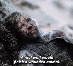 Watch Maybe some real wolves will find you, Arya thought. Maybe th GIF on Gfycat. Discover more arya stark, gameofthronesdaily, gotedit, mine, sandor clegane GIFs on Gfycat