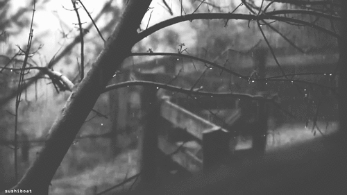 alone, black and white, dolor, frases, frio, girl, invierno, lluvia, recuerdos, tumblr, frio GIFs