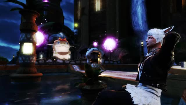 Watch and share FFXIV GIFs by ninjawitz on Gfycat