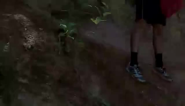 Squash vs. The Wild GIFs