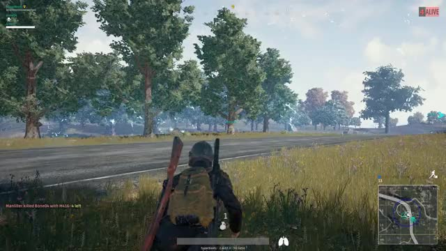 Watch and share Chicken Dinner GIFs and Spray And Pray GIFs by superbeefy on Gfycat