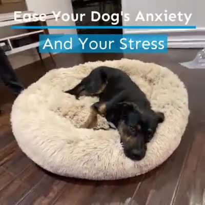 Watch and share Super-Paws-Shop-Make-Your-Pet-Happy-Comfy-Calming-Pet-Bed-Facebook GIFs by anneilagan08 on Gfycat