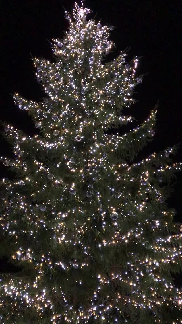 Watch and share Seasons Greetings GIFs and Sparkling Lights GIFs by rubymoonstar on Gfycat