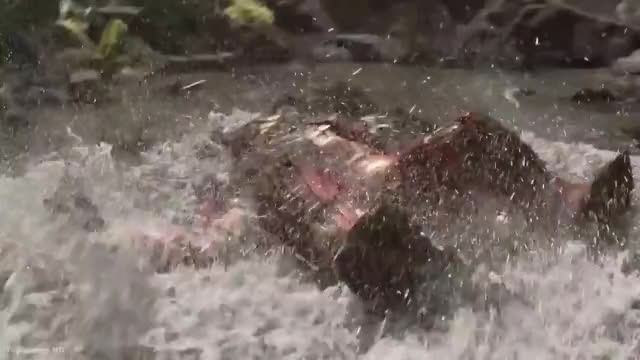 Watch this avengers infinity war GIF by AMCU (@justicelee) on Gfycat. Discover more avengers infinity war, hulk, people & blogs, top cenas hd GIFs on Gfycat