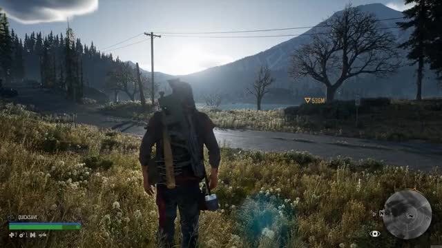 Watch and share Days Gone 1 GIFs by SmolBoi on Gfycat