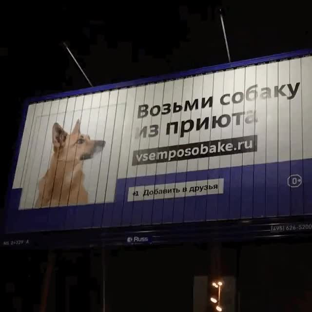Watch and share Гифки-реклама-5383848 GIFs on Gfycat