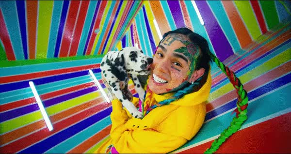 Watch and share 6ix9ine Dog GIFs on Gfycat