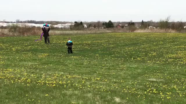 Watch and share Daddit GIFs and Kites GIFs on Gfycat