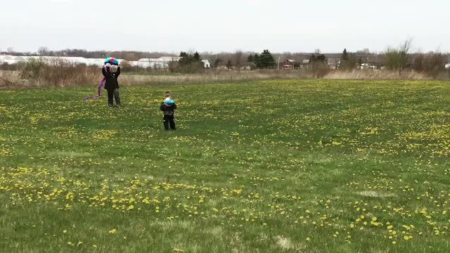daddit, kites, Outta The Way! GIFs