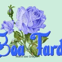 Watch and share Boa Tarde GIFs on Gfycat