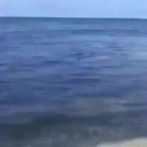 Watch and share Tough Beachl GIFs by Boojibs on Gfycat