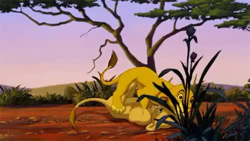 Watch and share Disney Lion King GIFs and Simba And Nala GIFs on Gfycat