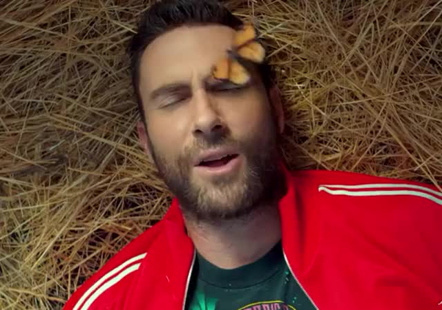 Watch and share Adam Levine GIFs and Maroon 5 GIFs by Reactions on Gfycat