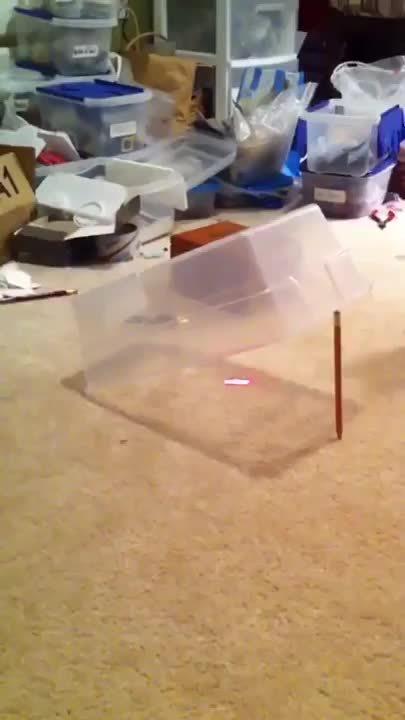 catpranks, Cat Trap GIFs