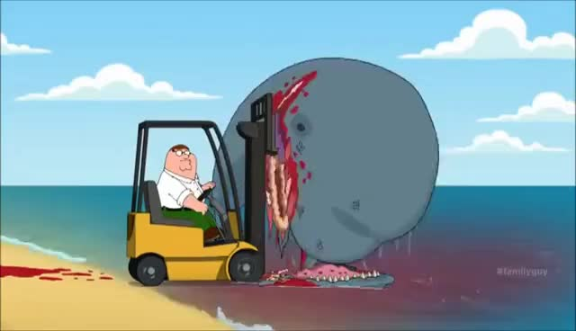 Watch and share FAMILY GUY WHALE FORKLIFT GIFs on Gfycat