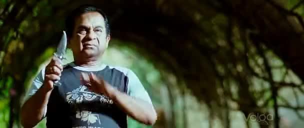 Watch and share Brahmi Expression - Julayi GIFs on Gfycat