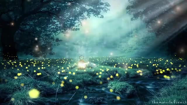 Watch Fairy Garden ASMR Ambience GIF on Gfycat. Discover more ASMR, Calming, Relaxation, ambiance, ambience, calm, cinemagraph, fairy, garden, magic, magical, relax, relaxing, soundscape GIFs on Gfycat