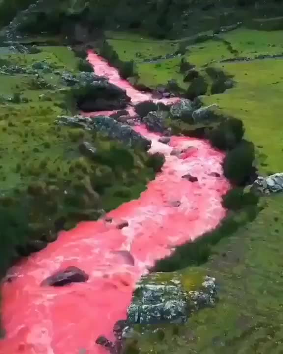 Watch and share Seriously Strange - Red River In Cusco Peru-1176367859691225088 GIFs by Avin Timilsina on Gfycat