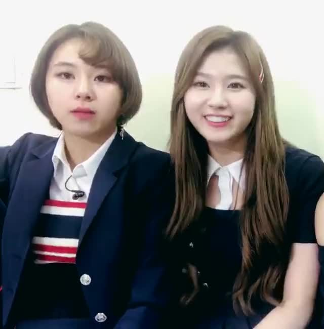 Watch and share Chaeyoung GIFs and Signal GIFs by Blueones on Gfycat
