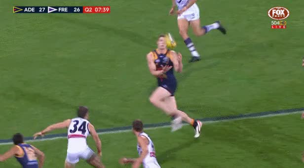 Watch and share Adelaide Crows GIFs and Afl GIFs on Gfycat