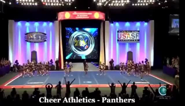 babs, cheer, panthers, ca panthers GIFs