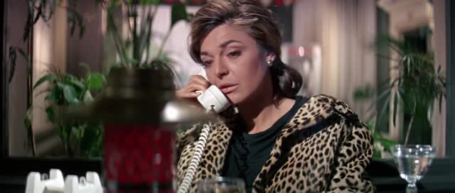 Watch and share The Graduate (1967) GIFs by mindmob on Gfycat