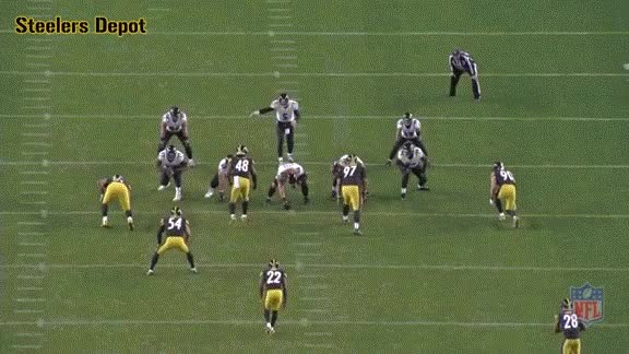 Watch and share Fort-ravens-2 GIFs on Gfycat